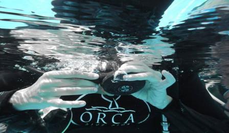 ORCA DIVE CLUB