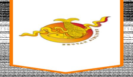 Bhutan Arilines
